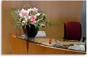 Office Flower Office Flowers And Plants