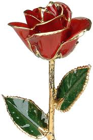 Amazon Com Red 24k Gold Rose By Living Gold Real Rose Dipped In