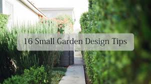 16 small garden design ideas