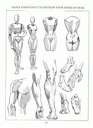 dorable human anatomy pdf books free ensign human anatomy