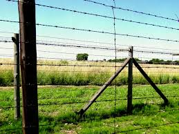 barbed wire fence concentration camp. Electric Barbed Wire Fences In Former Nazi Concentration Camp Stock Fence A