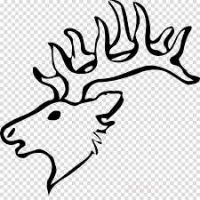 Download Draw A Deer Head Clipart Reindeer White Tailed Deer Draw A Easy Deer Full Size Png Image Pngkit