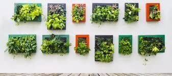 vertical gardening best s on