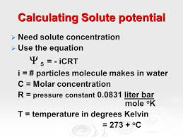 Water Potential Equation Water Potential Osmosis Water Potential The Combined Effects Of