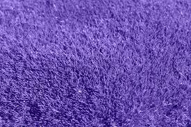 carpet background texture. background, purple, grass, lilac, carpet background texture