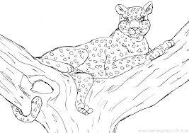 Leopard Coloring Pages Leopard Coloring Page Free Jaguar Coloring