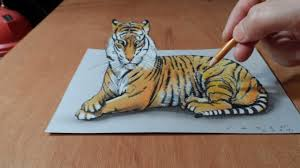 mainstream pictures of tiger drawings drawing 3d how to draw a trick art on paper you