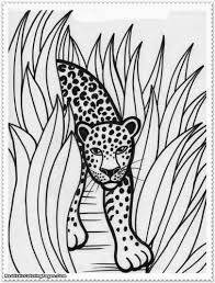 Free Animals In The Jungle Coloring Pages Girls Camp Pinterest