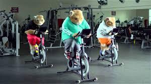 kia soul hamster 2014.  2014 2014 Kia Soul Hamster Commercial Inside I