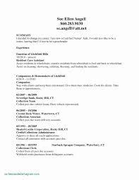customer service summary for resumes customer service summary for resume resume sample