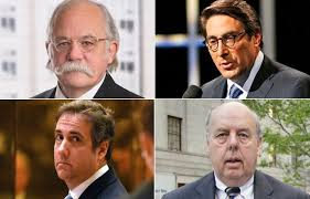 Image result for trump's lawyer team