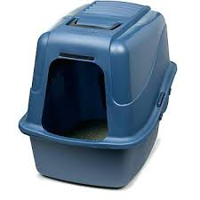 image covered cat litter. Covered Cat Litter Box Australia Best Puppies And Kitties Image