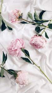 Pink and White Aesthetic Wallpapers ...