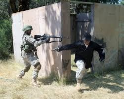 essay of white color guard rifles
