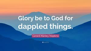 Image result for gerard manley hopkins quotes