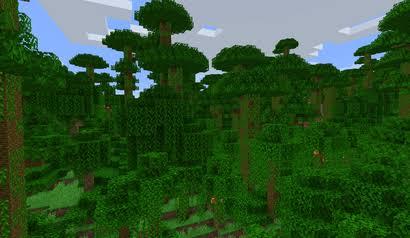 Minecraft Jungle