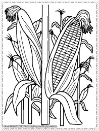 Printable Vegetables Corn Coloring Page Printable