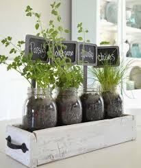 kitchen herbs indoor herb garden