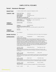 resume job responsibilities examples 14 things that you never invoice and resume template ideas