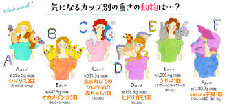 Japanese Bra Size Chart Do A Womans Breasts Weigh More Than A Persian Kitten Handy