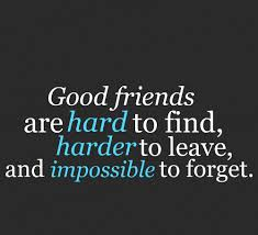 Quotes About Good Friendship Enchanting Famous Friendship Quotes About Good Friends Golfian