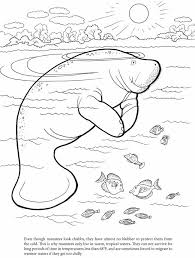 manatee coloring page 2. Wonderful Page Another From My Coloring Book  On Manatee Coloring Page 2 I