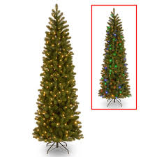 Tall Slim Christmas Trees  Christmas Lights DecorationKingswood Fir Pencil Christmas Tree