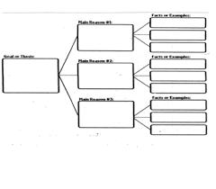 Informative Writing Graphic Organizer   Informative writing