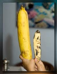 Banana References (Page 1) - Line.17QQ.com