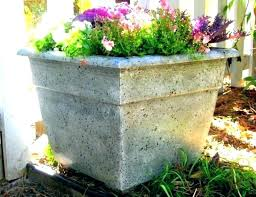 big lots flower pots large outdoor flower pots interior best planters images on big lots kitchen