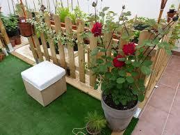 Como Cuidar Los Rosales Durante El Invierno  Cuidado De PlantasCuidados De Los Rosales