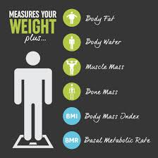 Salter Body Analyser Guide