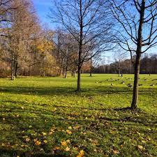 """سائح في أوروبا en Twitter: """"#شروق #الشمس في #الحديقة #الإنجليزية #ميونخ # ألمانيا N 48.14796 E 11.58757 @AhmdSL #AhmdSL https://t.co/sgSfPxvlQ2… """""""
