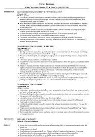 Senior Director Strategy Resume Samples Velvet Jobs