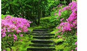 stone steps are one way to 039 dress 039 a slope