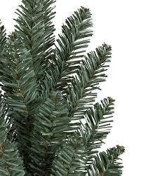 Park Hill Collections Blue Spruce 54Artificial Blue Spruce Christmas Tree
