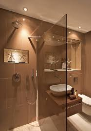 bronze tinted shower