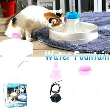 heated pet water bowl outdoor