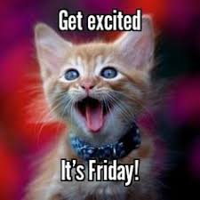 Memes Vault Friday Cat Memes via Relatably.com