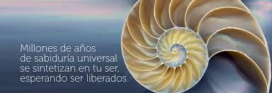 Resultado de imagen de sabiduria universal