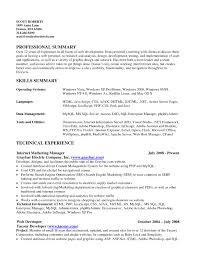 Skills Summary Resume Sample Resume For Study