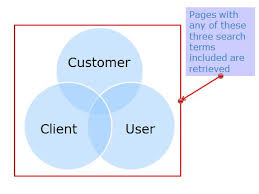 about social networking site essay explain