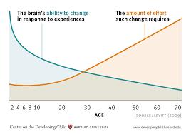Whole Brain Child Chart Brain Architecture