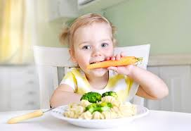 13 Month Old Baby Diet Chart Food Chart For 13 Month 3 Week Old Baby Nutritionist