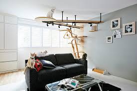 cat safe furniture. Cat Safe Furniture