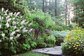 Small Picture perennial garden design zone 7 House and Decor