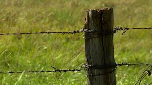 wire farm fence. A Kansas Farm Fence Post And Barbed Wire. Stock Video Footage - Videoblocks Wire S