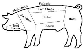 pig part diagram pig database wiring diagram images pig part diagram