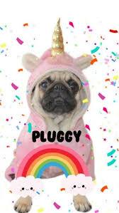 Pluggycorn, aww, camila, costume, cute ...