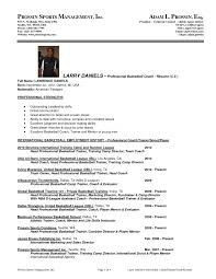Volleyball Coach Resume Examples Professional Basketball Player
